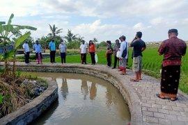 Di Denpasar, dinas perikanan tebar puluan ribu benih ikan nila