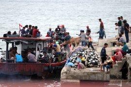 Kemenhub catat pergerakan penumpang transportasi umum meningkat di libur Idul Adha