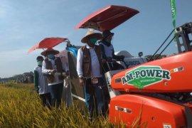 Indonesia Pertahankan swasembada pangan, Kabupaten berkontribusi sumbang persediaan
