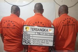 Polresta Ambon tetapkan tiga tersangka pencuri hewan kurban dan ranmor