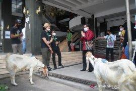 Wali Kota terima bantuan hewan kurban dari gojek