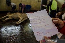 Kurban di rumah potong hewan Bandung