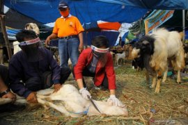 Antisipasi penyebaran COVID-19, Takmir Masjid Agung Ngawi tiadakan penyembelihan hewan kurban