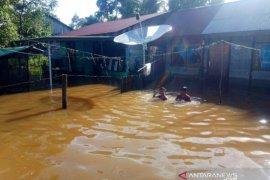 Ratusan warga di Aceh Barat masih terdampak banjir setinggi satu meter