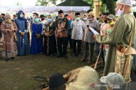 Pemkot Padangsidimpuan sembelih 9 hewan kurban