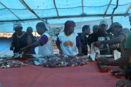 Pengungsi korban gempa di Liang terima hewan kurban dari ACT Maluku