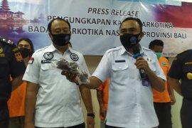 BNNP Bali gagalkan penyelundupan narkoba sindikat Bali-Riau