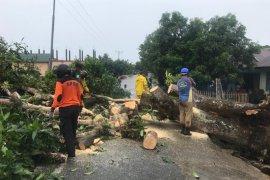 Sebanyak 11 unit rumah warga Abdya rusak parah diterjang puting beliung