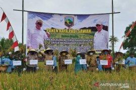 Bupati apresiasi keberhasilan panen padi sawah di Desa Pudi