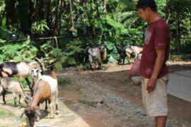 Warga Dusun Kumpai Panjang kenang Satgas TMMD 108 Kodim 1203/Ktp