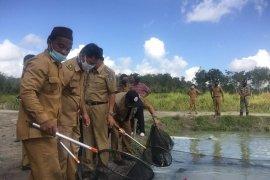 Pemkab Bangka Tengah dorong budi daya ikan terpadu