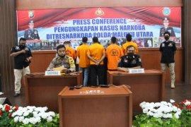 Ditresnarkoba Polda Malut bekuk 13 tersangka