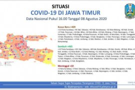 Tersisa sembilan daerah zona merah COVID-19 di Jatim