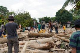 Pemprov Sulsel tanam bambu di pinggiran sungai Luwu Utara untuk cegah bencana