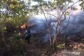 Gawat, empat hektare lahan gambut hangus terbakar