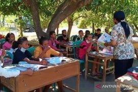 Terkendala internet, pelajar di Sikka belajar tatap muka di bawah pohon