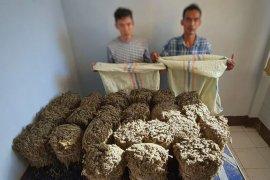 Polresta Banda Aceh tangkap sembilan tersangka narkoba