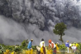Letusan Sinabung diprediksi hingga ke Malaysia