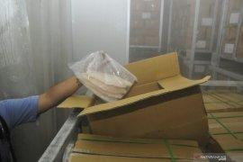 KKP gandeng Polri ungkap kasus penyelundupan ikan patin