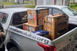 Ratusan satwa sitaan dikembalikan ke habitatnya di Maluku