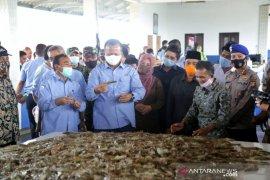 Bupati Pandeglang Dampingi Menteri Edhy Prabowo Panen Raya Udang Vaname
