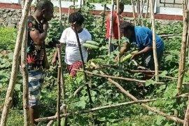 Pemkab Jayapura jadikan kampung sumber ekonomi baru