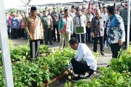 Lapsus - Mentan: Presiden Akui Pertanian Kalsel