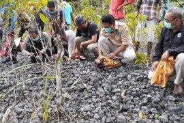 BKSDA Maluku lepas liarkan puluhan ekor satwa endemik di tanam Manusela