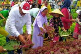 """Bupati Malra: """"TPID Award"""" motivasi untuk terus bekerja"""
