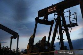 Pertamina PEP Jambi tembus produksi 3.553 barel minyak per hari