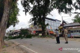 PLN Ngabang dan Satpol PP Landak pangkas pohon untuk jaringan listrik