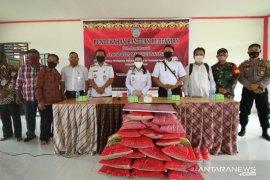Bupati Karolin bagikan 832 ton benih padi bersertifikasi