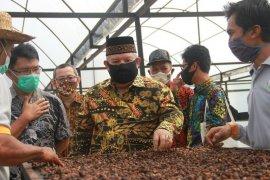 Pemkab Tanjabbar gandeng Unja kembangkan kopi liberika