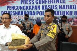 Ditresnarkoba Polda Malut gagalkan kiriman narkoba 1.400 gram