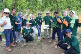 YABN bantu tangani lahan kritis dengan menanaman pohon bambu