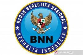Diduga bawa ganja, Satpam BNNK Aceh Selatan ditangkap Polisi