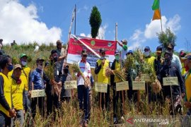 Kementan targetkan Indonesia bisa swasembada bawang putih pada 2024