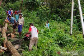 Warga desa di Malra bersihkan jaringan listrik