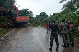 Jalur Weda - Lelilef di Pulau Halmahera kembali terjadi longsor