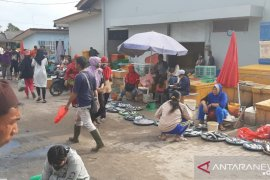 Harga ikan di TPI Sungailiat turun Rp5.000 perkilogram