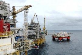 Harga minyak kembali jatuh, tertekan kekhawatiran pemulihan ekonomi