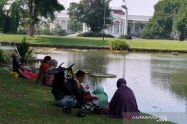 Kebon Raya Bogor ramai dikunjungi wisatawan di akhir pekan