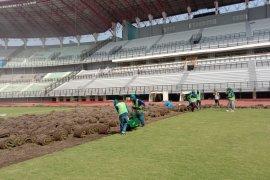 Pengupasan rumput lama Stadion GBT Surabaya hampir rampung