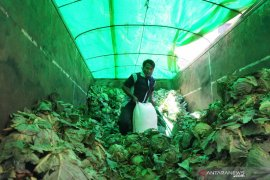BPOM Gorontalo gagalkan penyelundupan miras yang ditutup sayuran