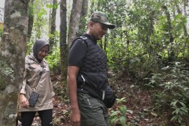 Yok.. jajal trekking di Wisata Ilmiah Aek Nauli Simalungun