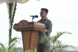 Menteri Pertanian RI kunjungi pengembangan program Food Estate Babel