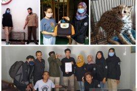 Les-Cakra serahkan macan rembah Jawa ke BKSDA Kediri