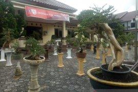 Pemkab Bangka Barat gelar pameran bonsai dorong pertumbuhan ekonomi kreatif