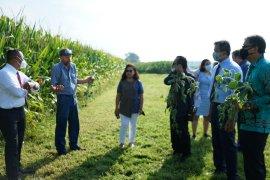 Warga Indonesia akan dirikan pabrik tempe di Amerika Serikat