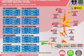 GTPP : Pasien sembuh COVID-19 di Malut bertambah 53 orang
